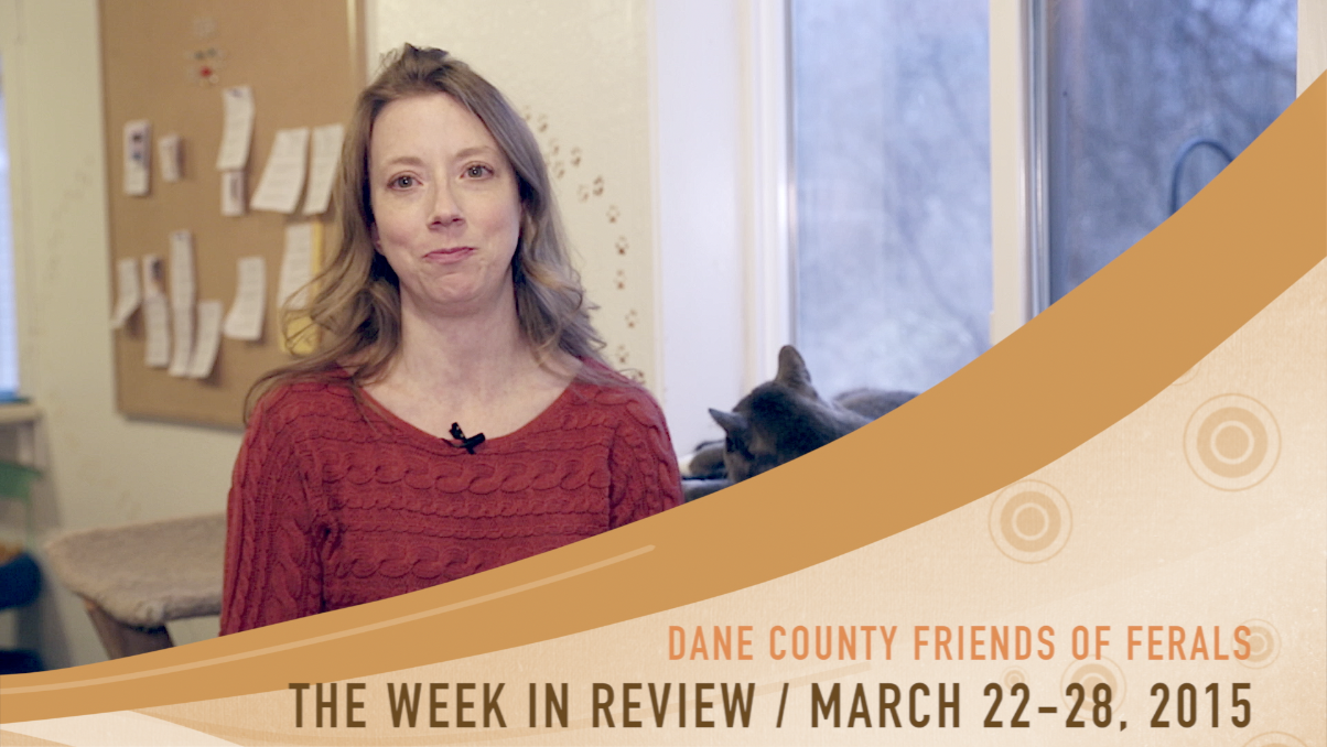The inaugural edition of The Week in Review