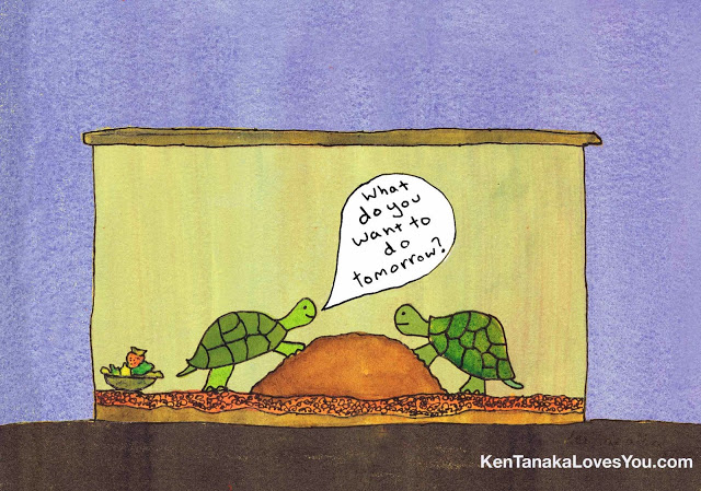 turtle+toon+what+do+you+want+to+do+tomorrow.jpg