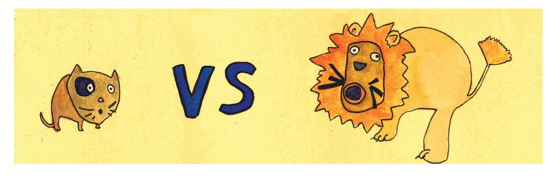 lion vs cat blog.jpg