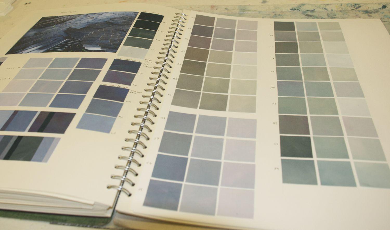 Pigeon colour scheme.jpg