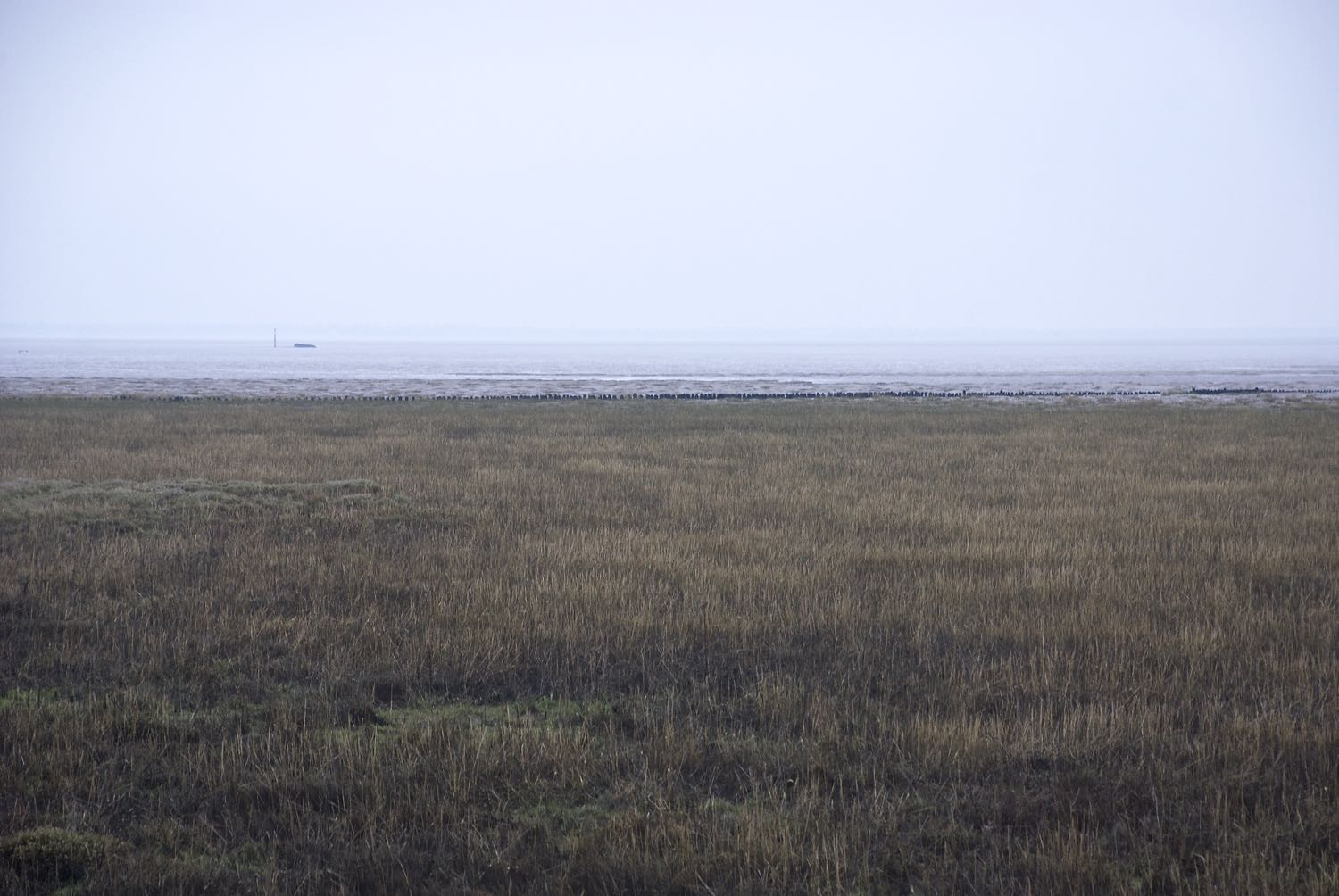 Dengie mist over mud flats.jpg