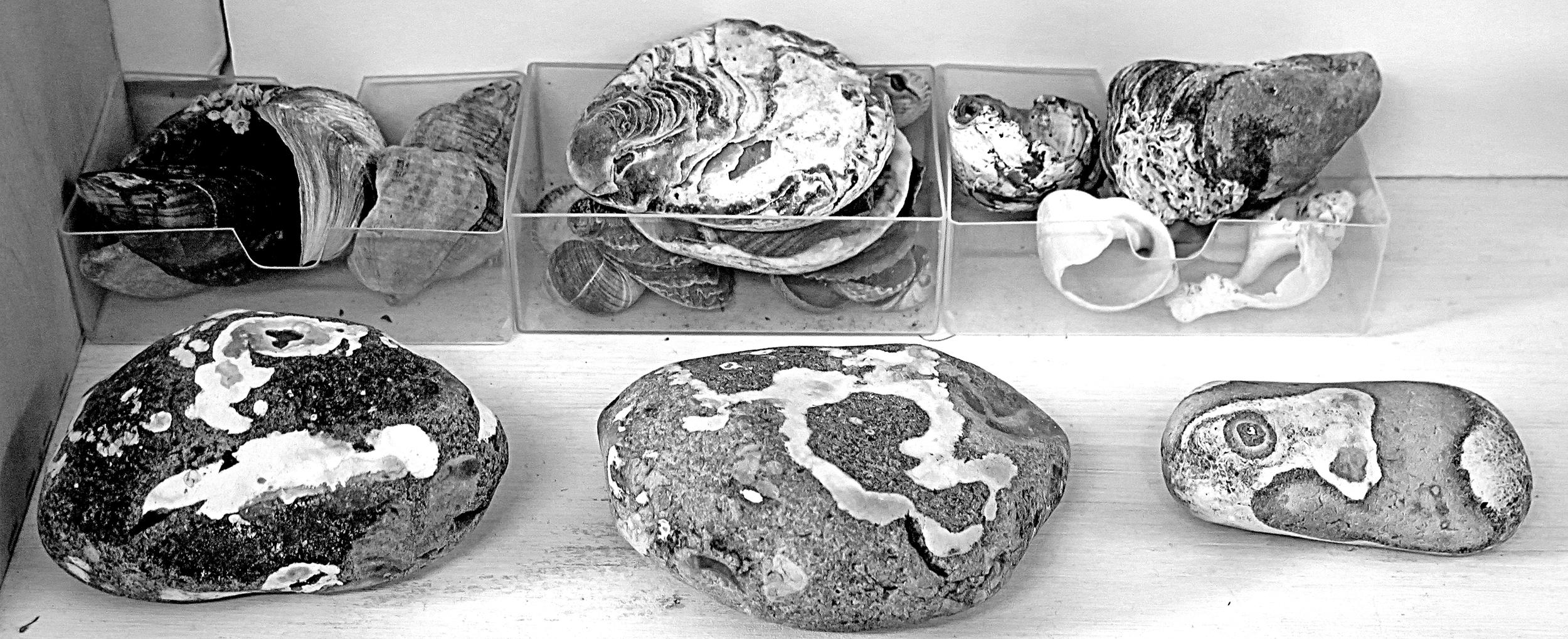 Bronwyn Oldham stones