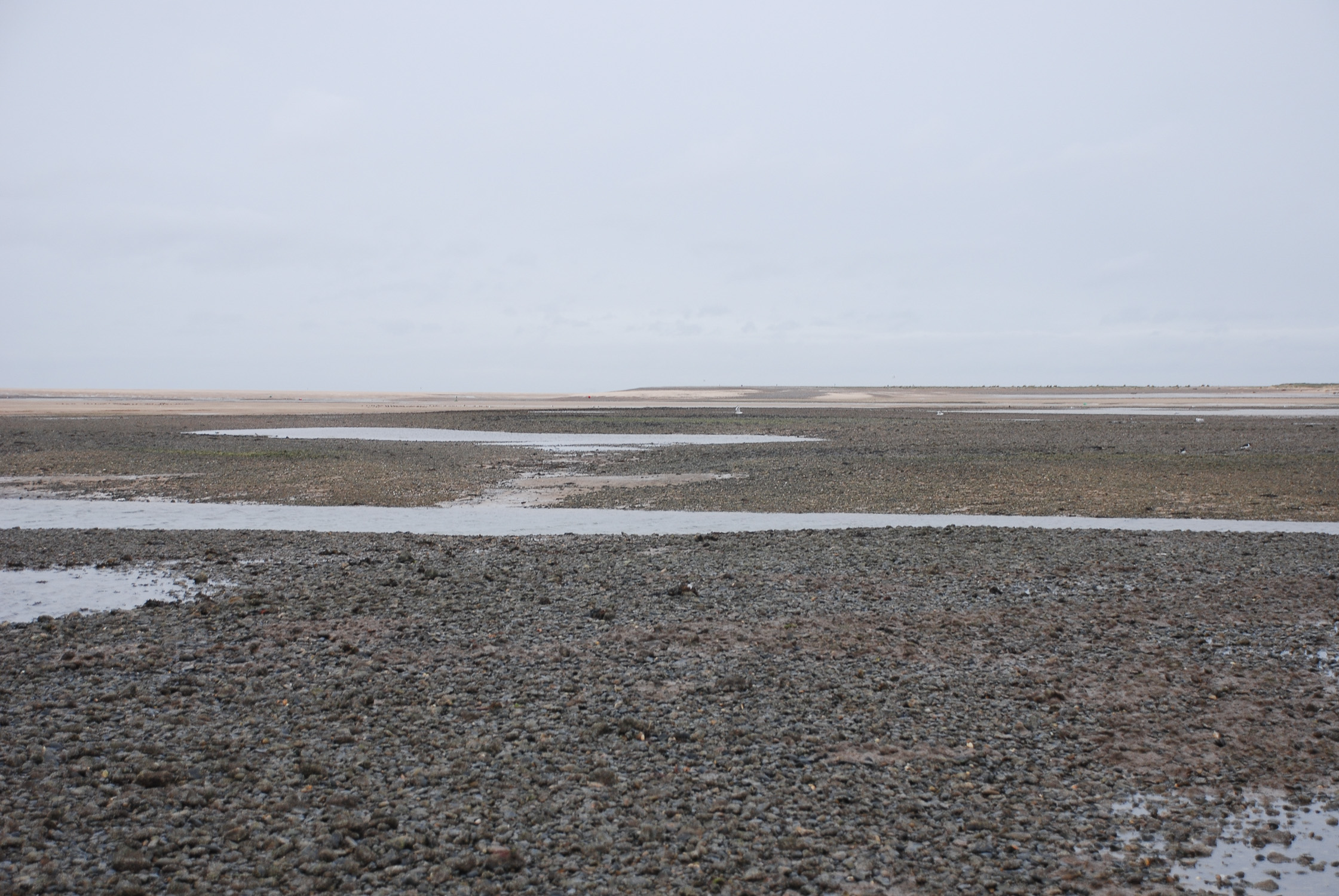 Morston Blakeney Channel 02 2015 Helen Terry.jpg