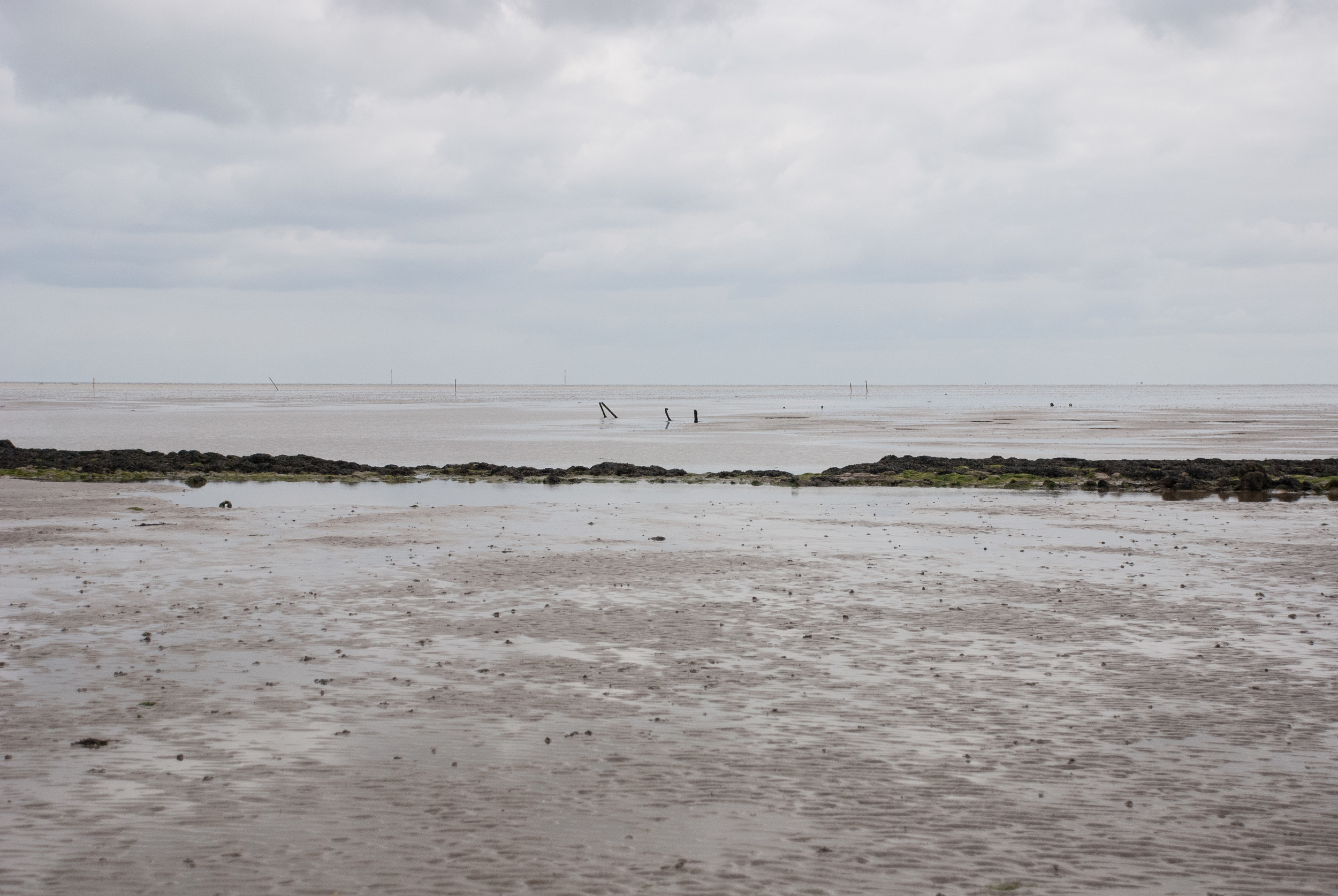 The Broomway 14May2016 27.jpg