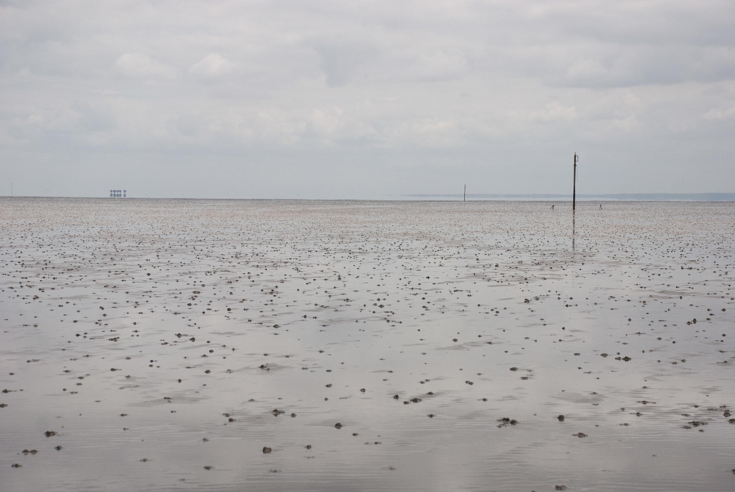 The Broomway 14May2016 38.jpg