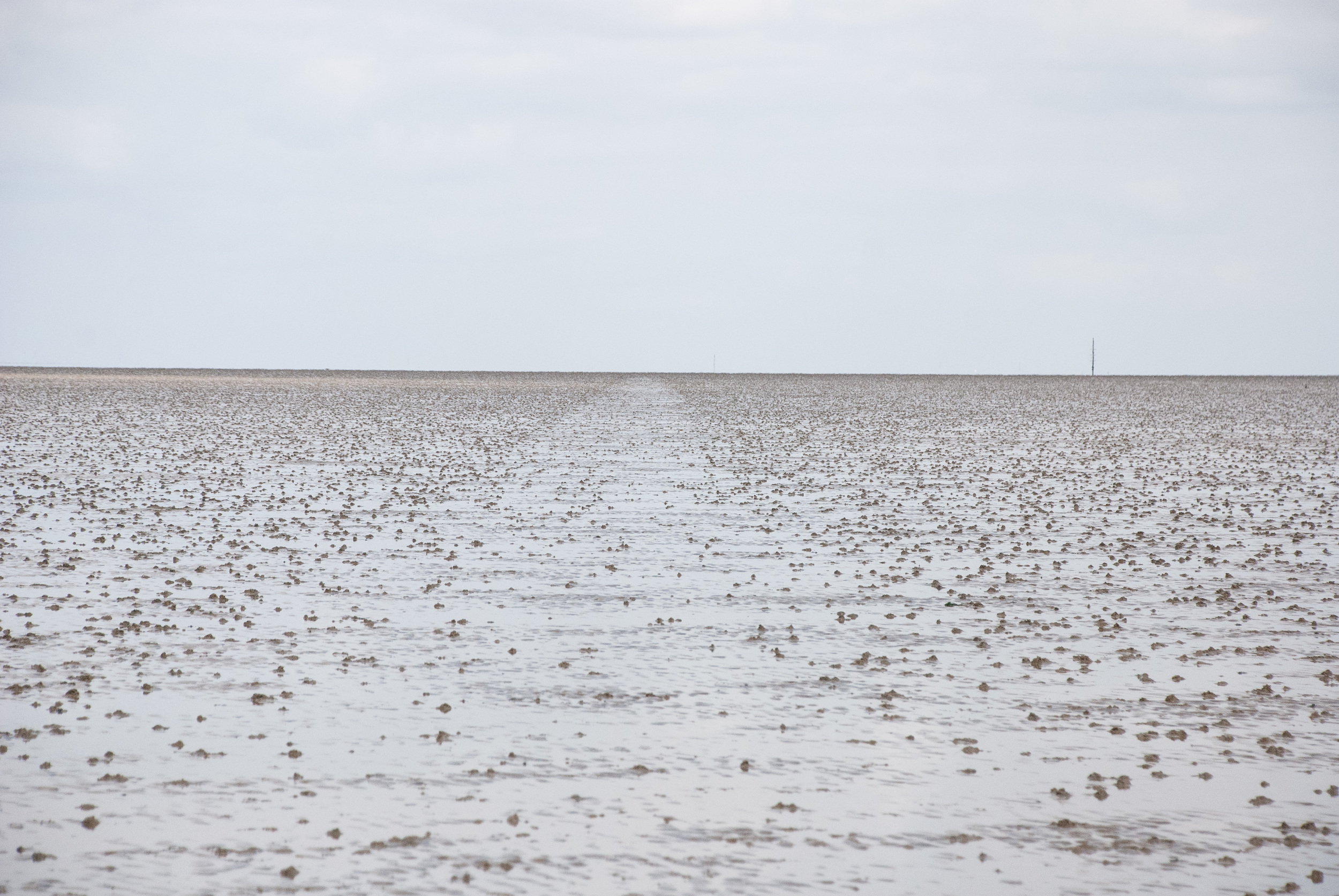 The Broomway 14May2016 40.jpg