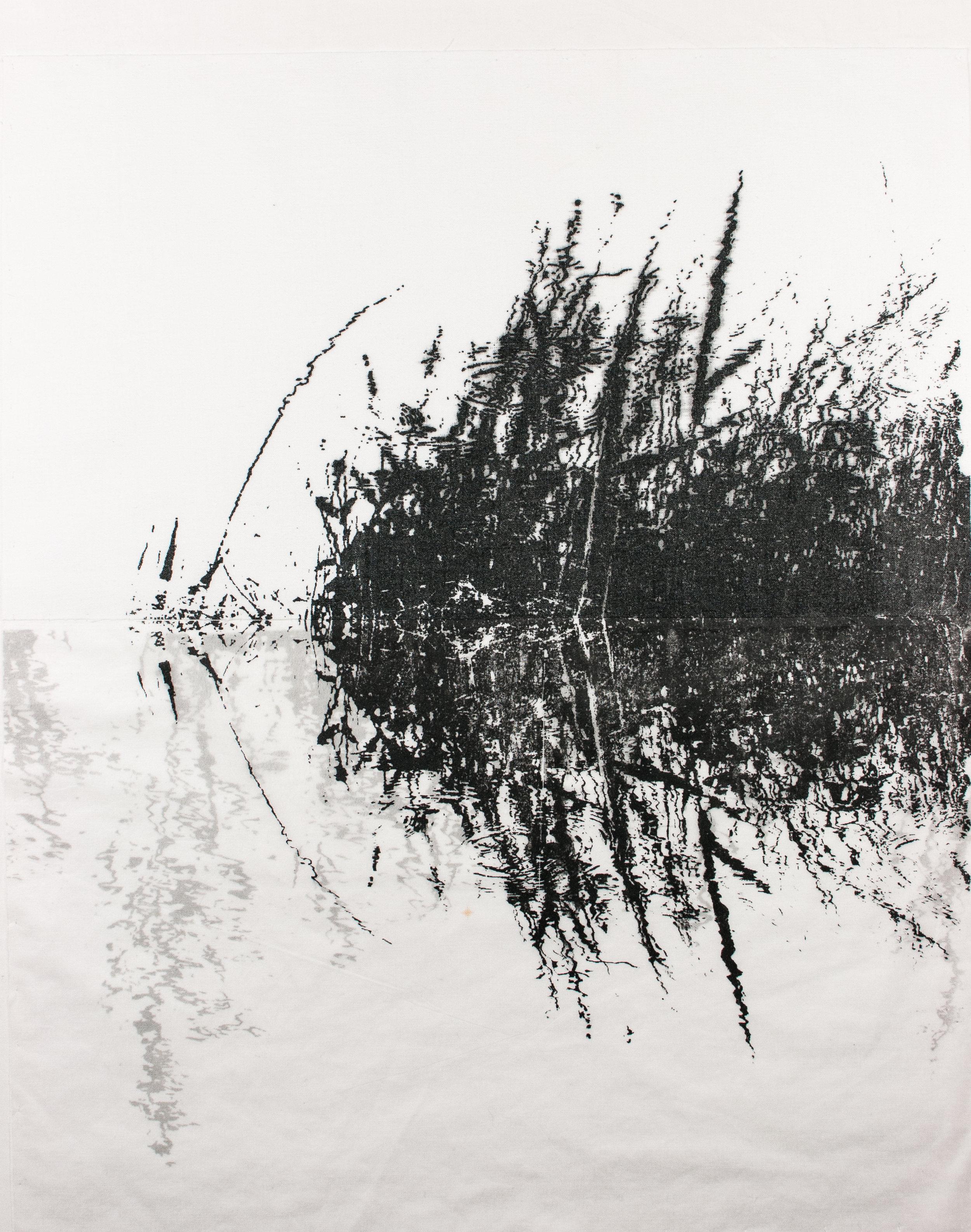 Wicken Fen: Monochrome 3