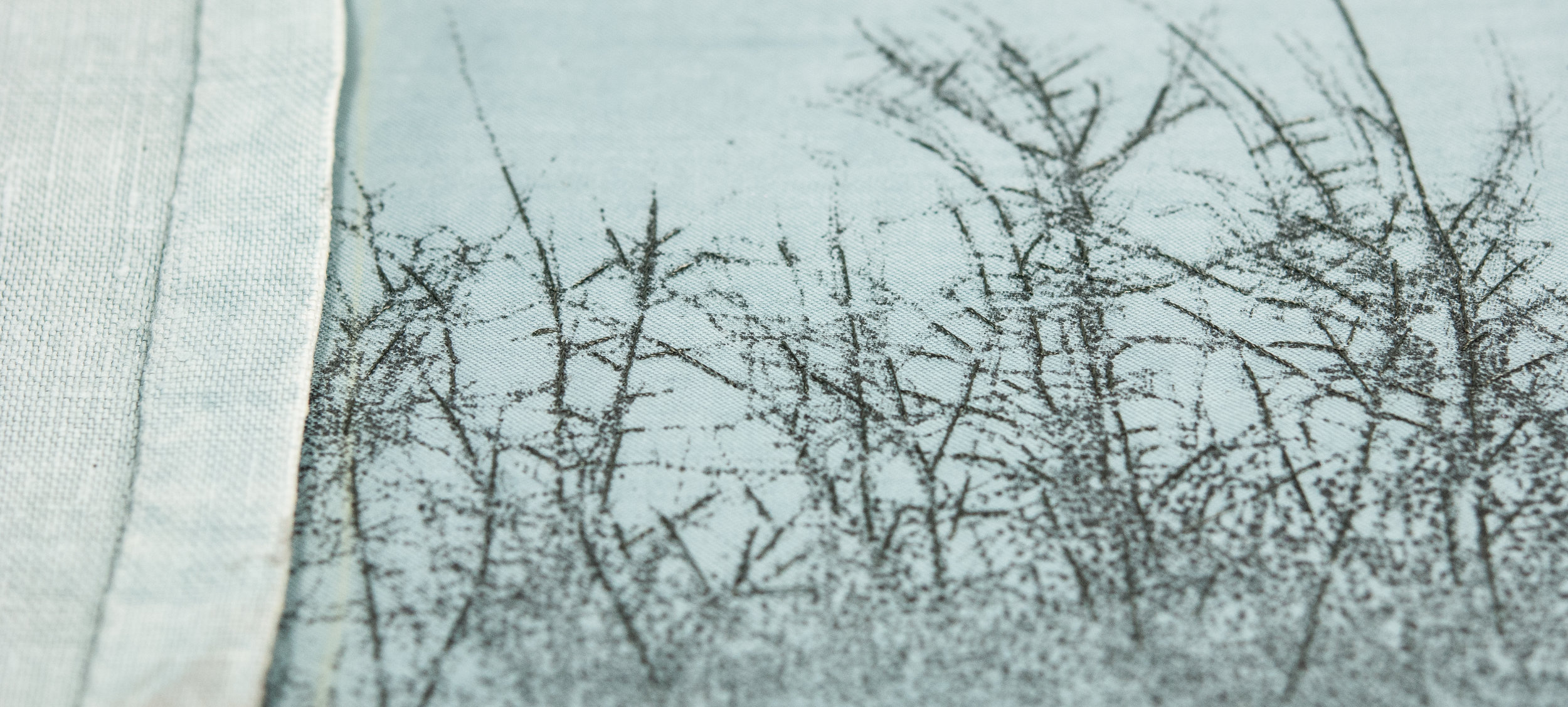 Thorn detail 2 Helen Terry October2017.jpg