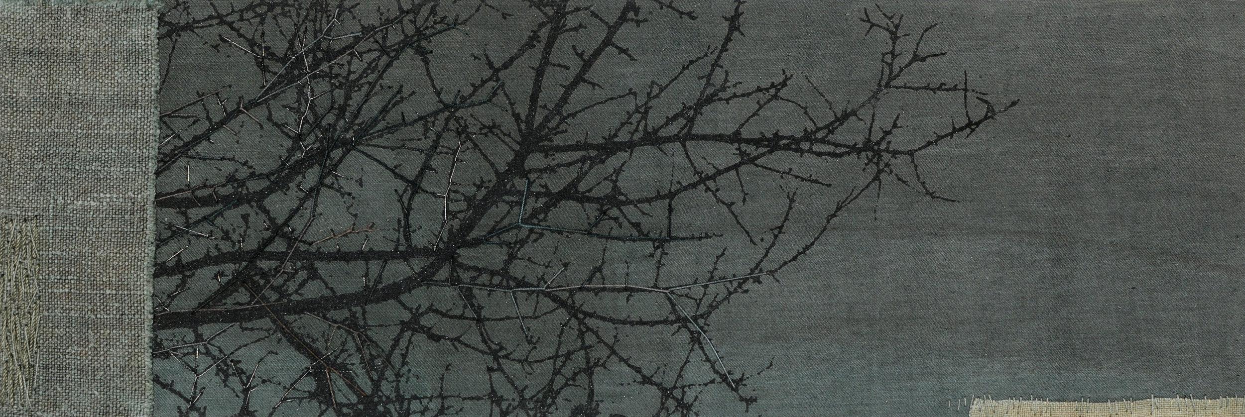 Thorn 6 (Noctua)