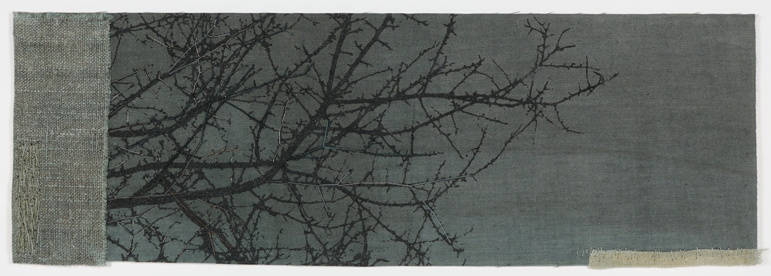Thorn 06 Noctua.jpg