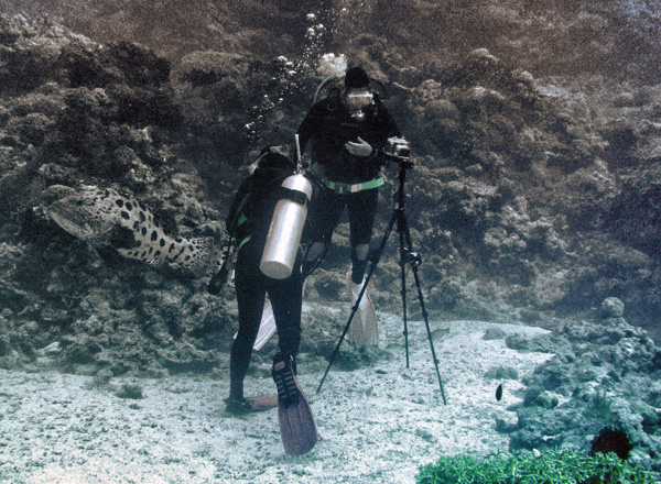 Taking light measurements underwater