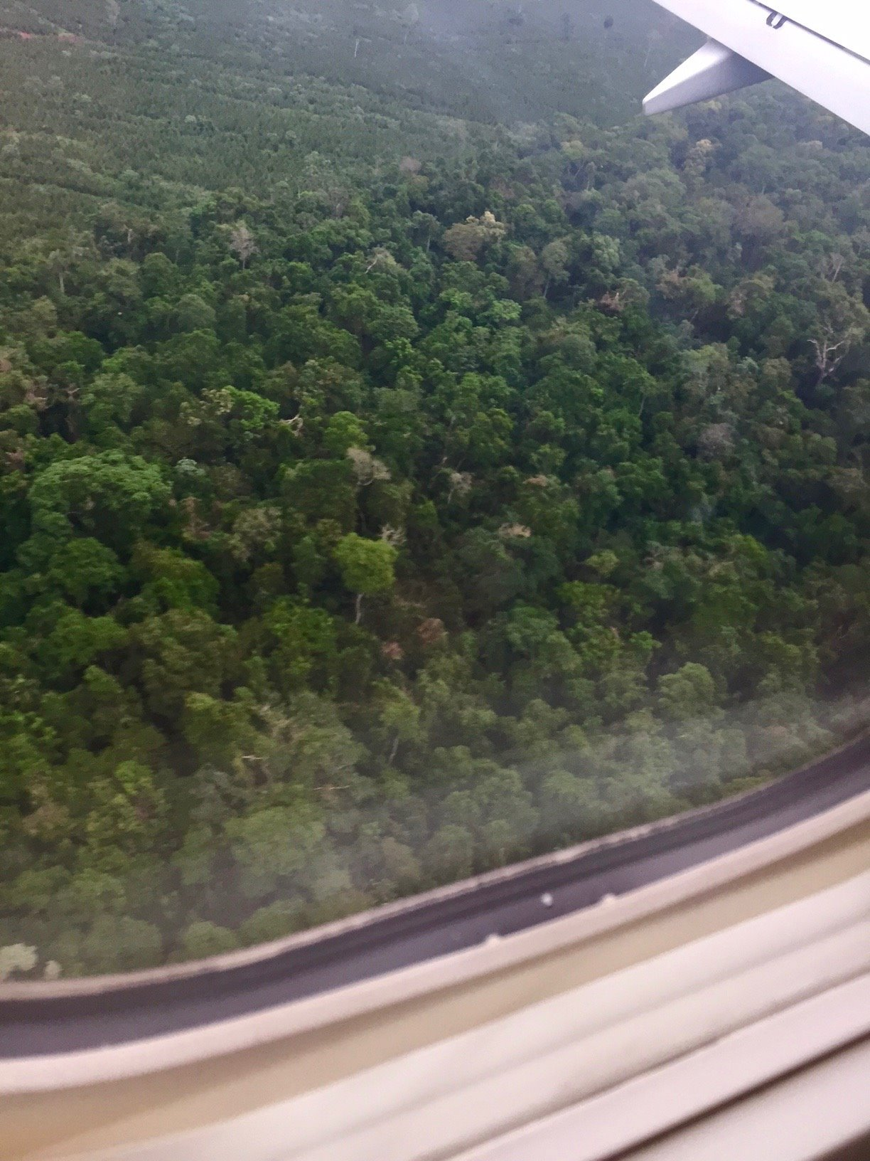 Flying over the jungle at the Brazil/Argentine border on the way to Puerto Iguazu.