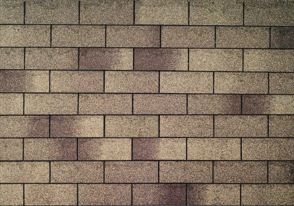 asphalt_shingle_074.jpg
