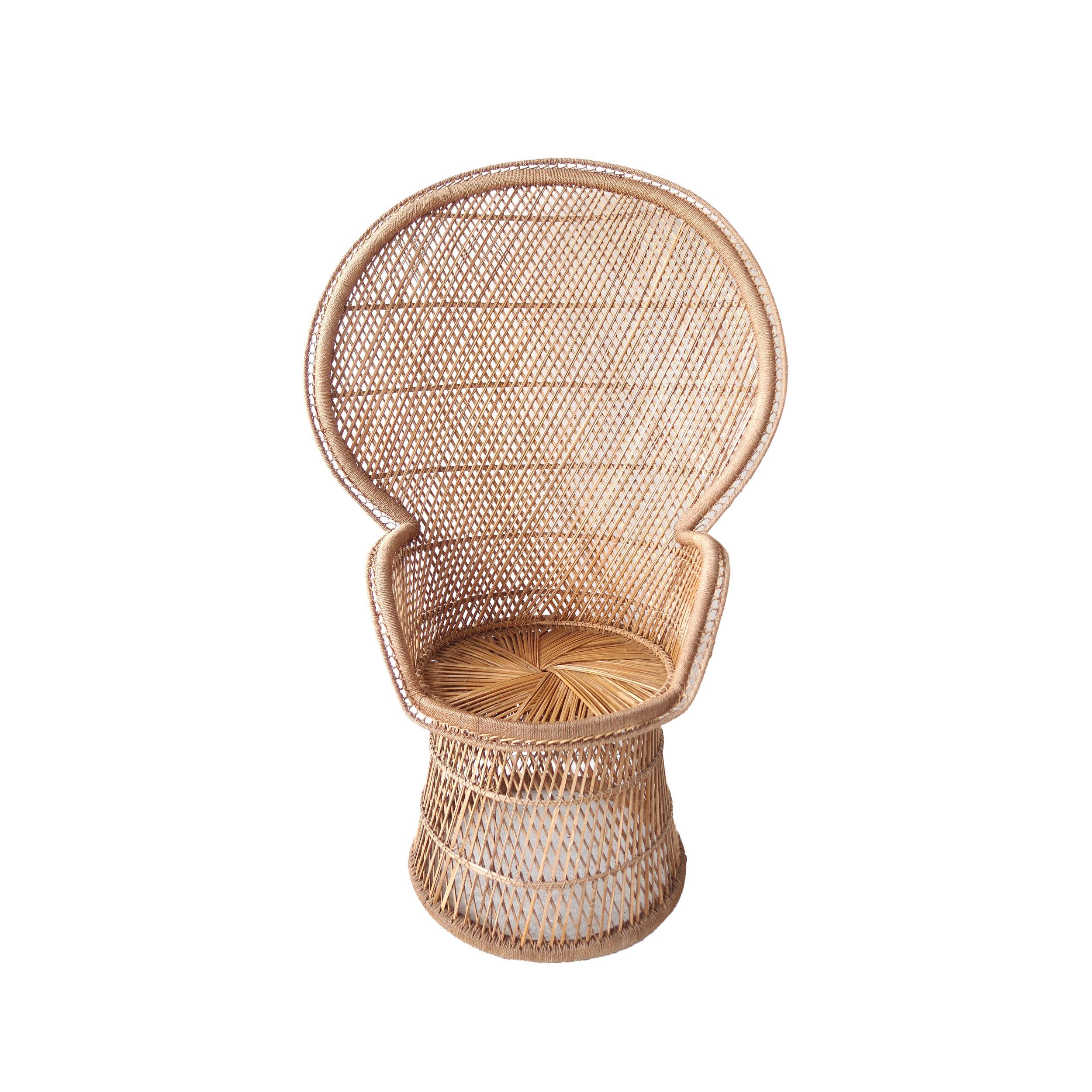 vintage fan peacock chair copy.jpg