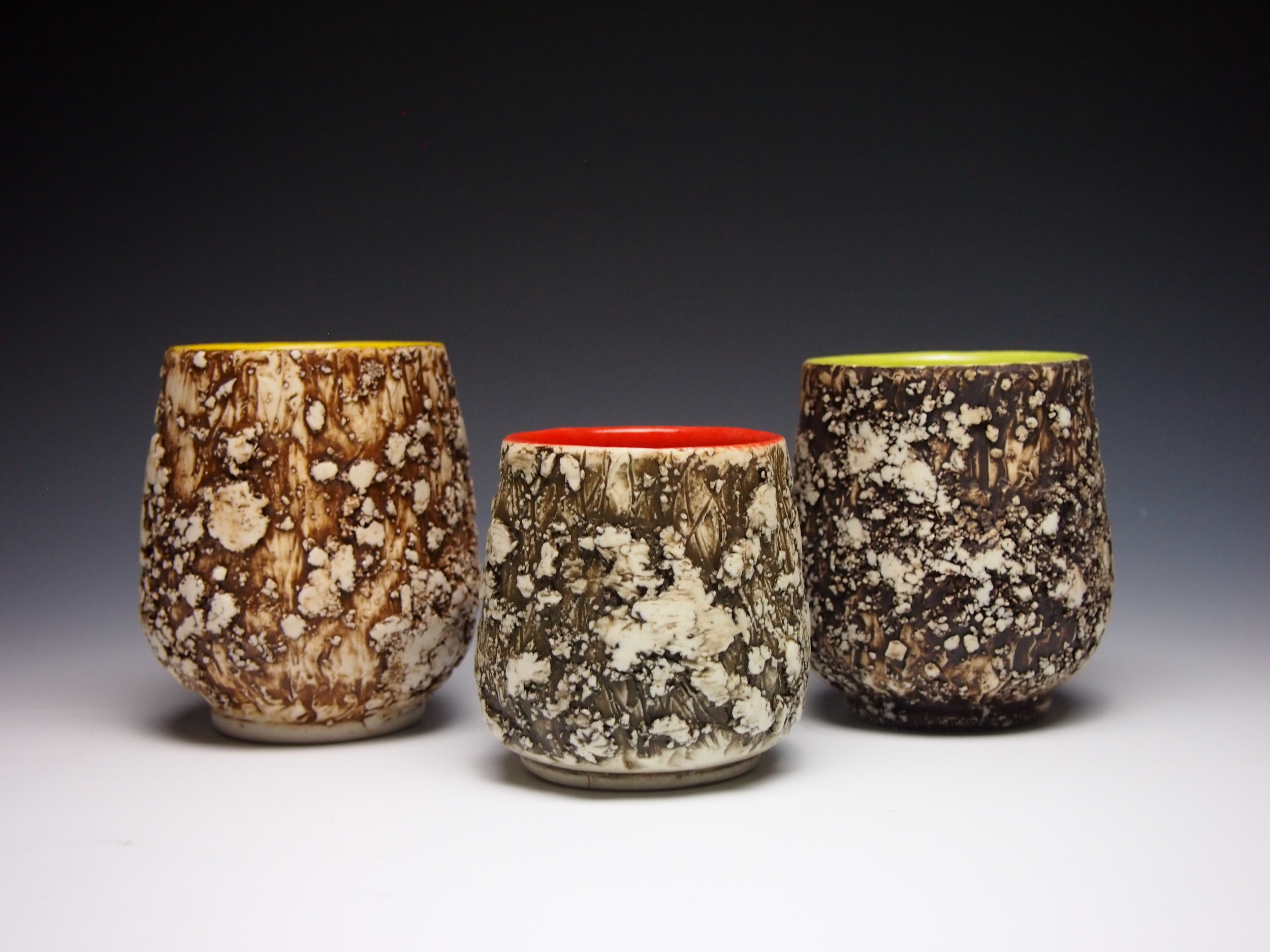 Assorted Lichen Cups