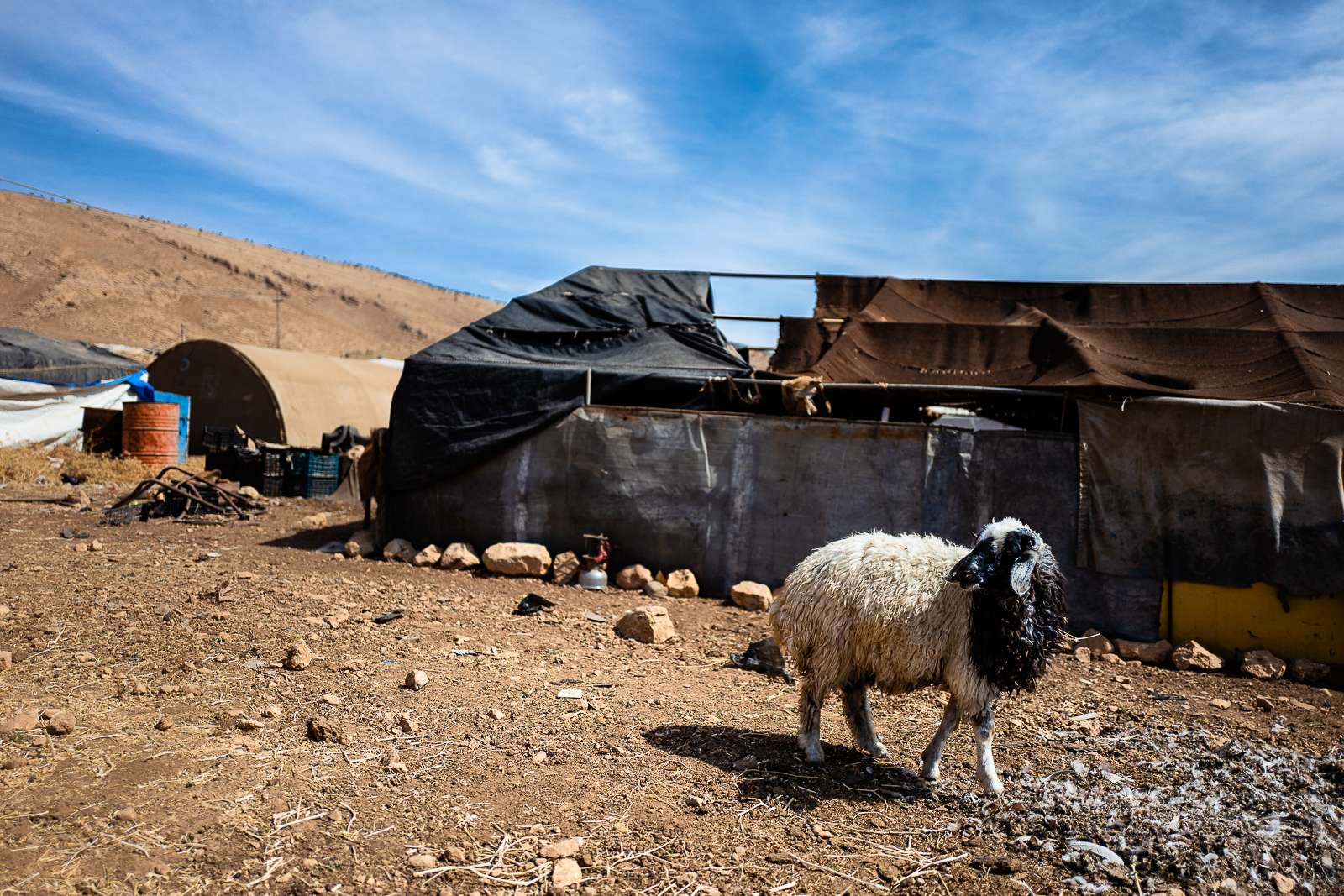 A scene of life from the top of Sinjar mount