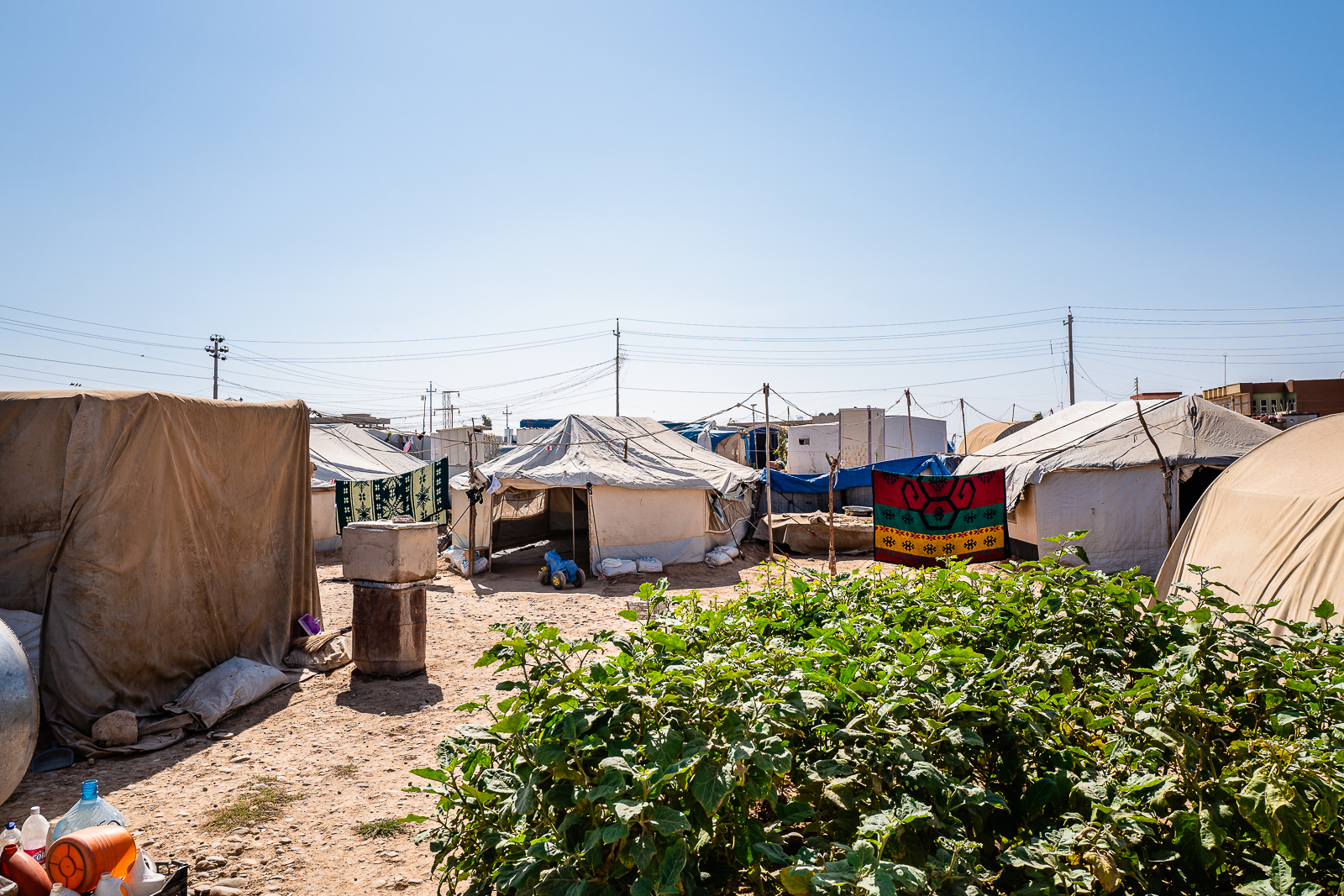 The unofficial camp in Sharya, near Dohuk