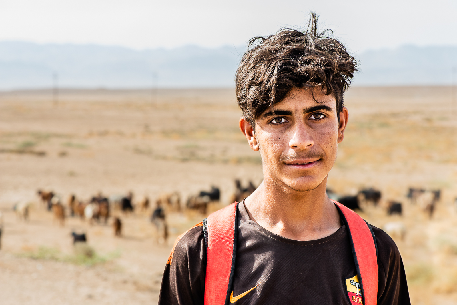 A shepard with his sheep in background under the Sinjar Mount