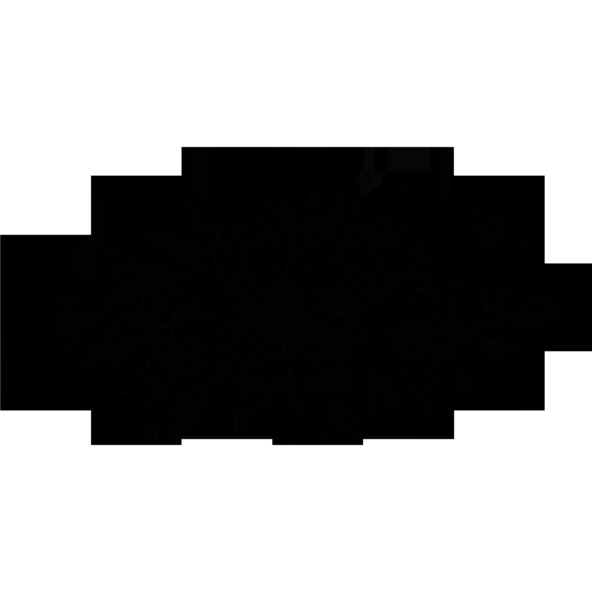 Flowers Logo Transparent 3x3.png