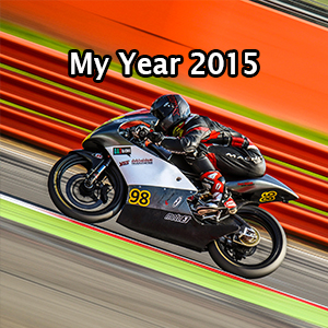 my year 2015.jpg