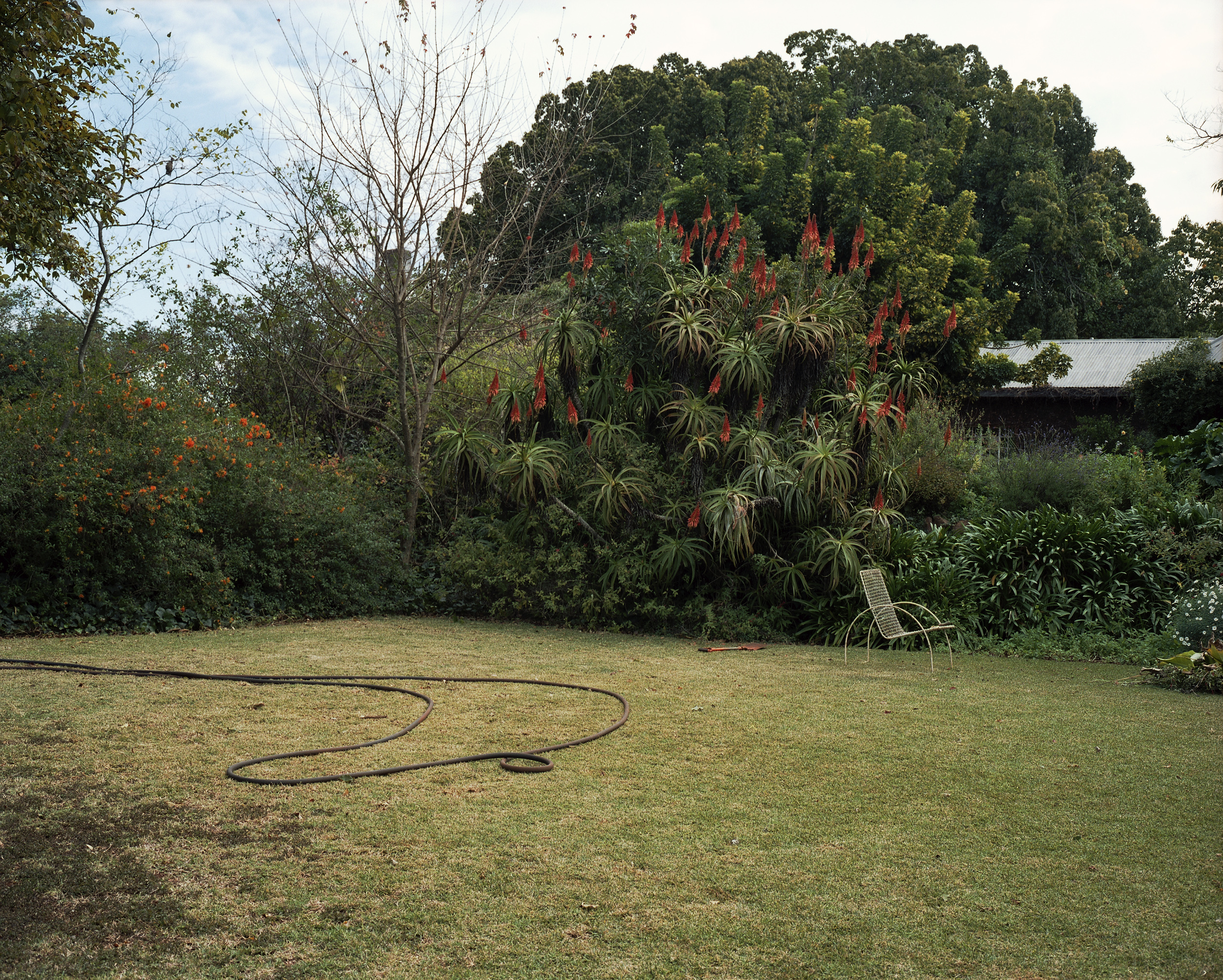 Untitled (Yard, Louis Trichardt, South Africa)