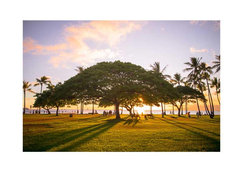YoheiKoinuma_Series_Hawaii06.jpg