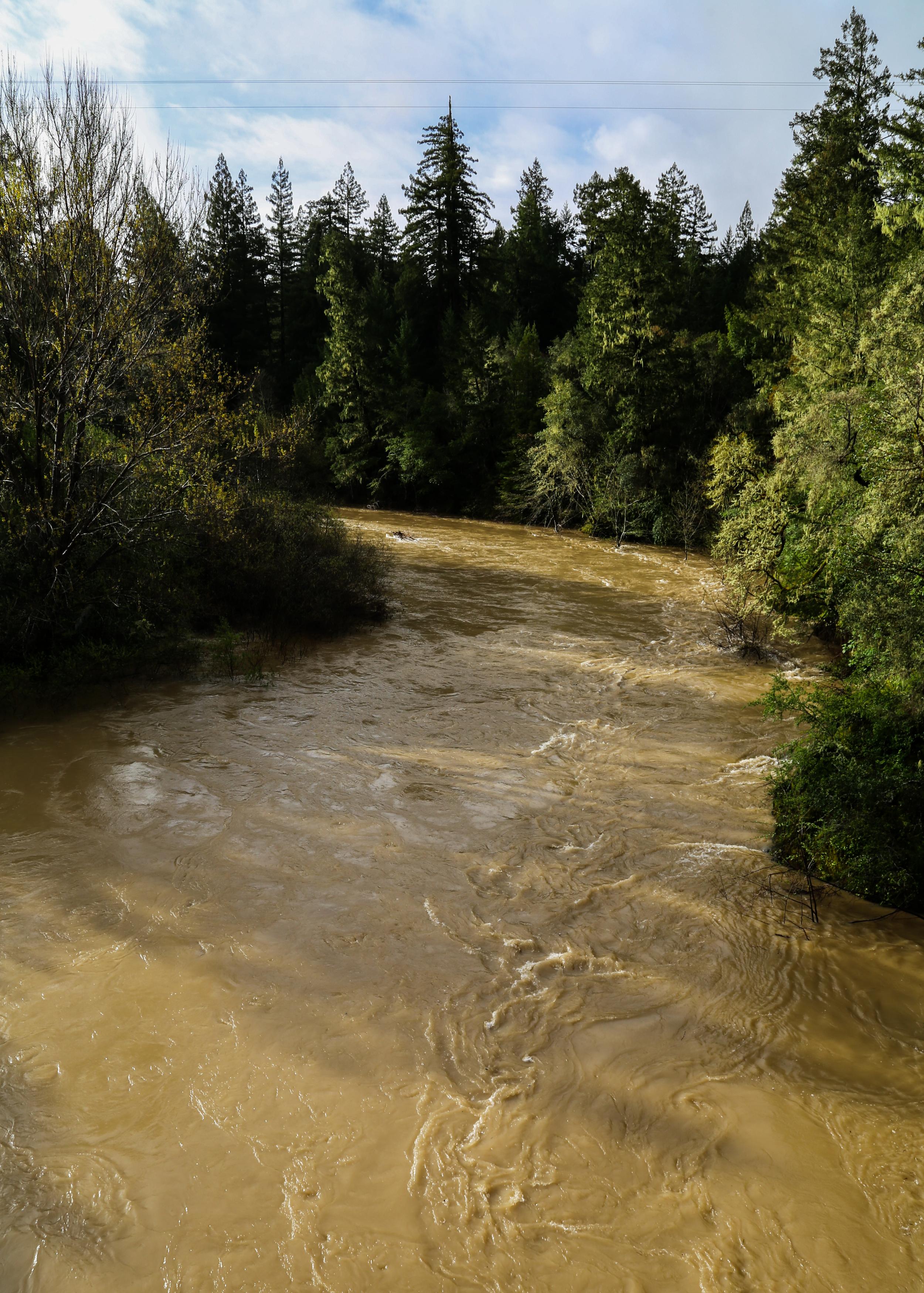 Navarro River at Hendy Woods