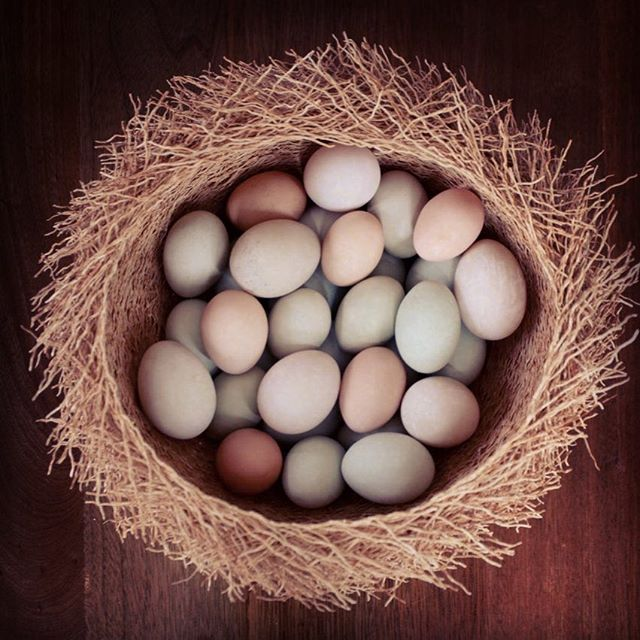 This image from our very first Easter Sunday brought it all back home 🧩 we built the barn to honor the growing and making of glorious food and celebrate time spent with family and friends enjoying it. It's why we got into this bonkers business in the first place. And its still what keeps us going. 🐤🐦 If you plan on sharing your Easter Sunday with us - and we hope you do - it's best to book by calling... the gardens are filling up fast 🐣 #easter #brunch #barndiva #eattheview