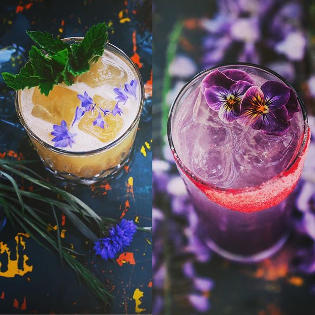 we are drinking up the gardens... and in them too... 👈🏼 terra's 'barefoot julep' and  andrew's 'my little bebop pony.' ingredients and name inspirations 👀this weeks Barndiva.com/blog . . 🌱#barndiva 🌸#eattheview 🥃#cocktails 👫#teamwork