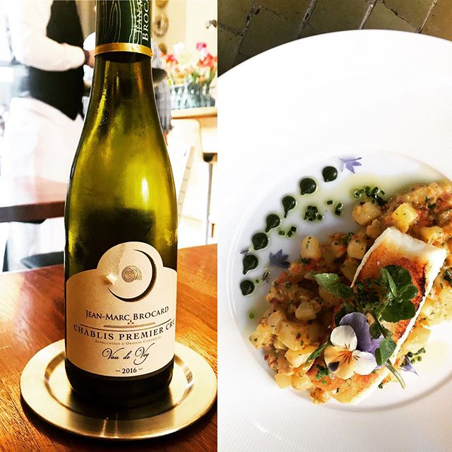 Chablis & Sea  Brocard half bottle w/ line caught Halibut 😍 #barndiva #winecountry 👌🏻