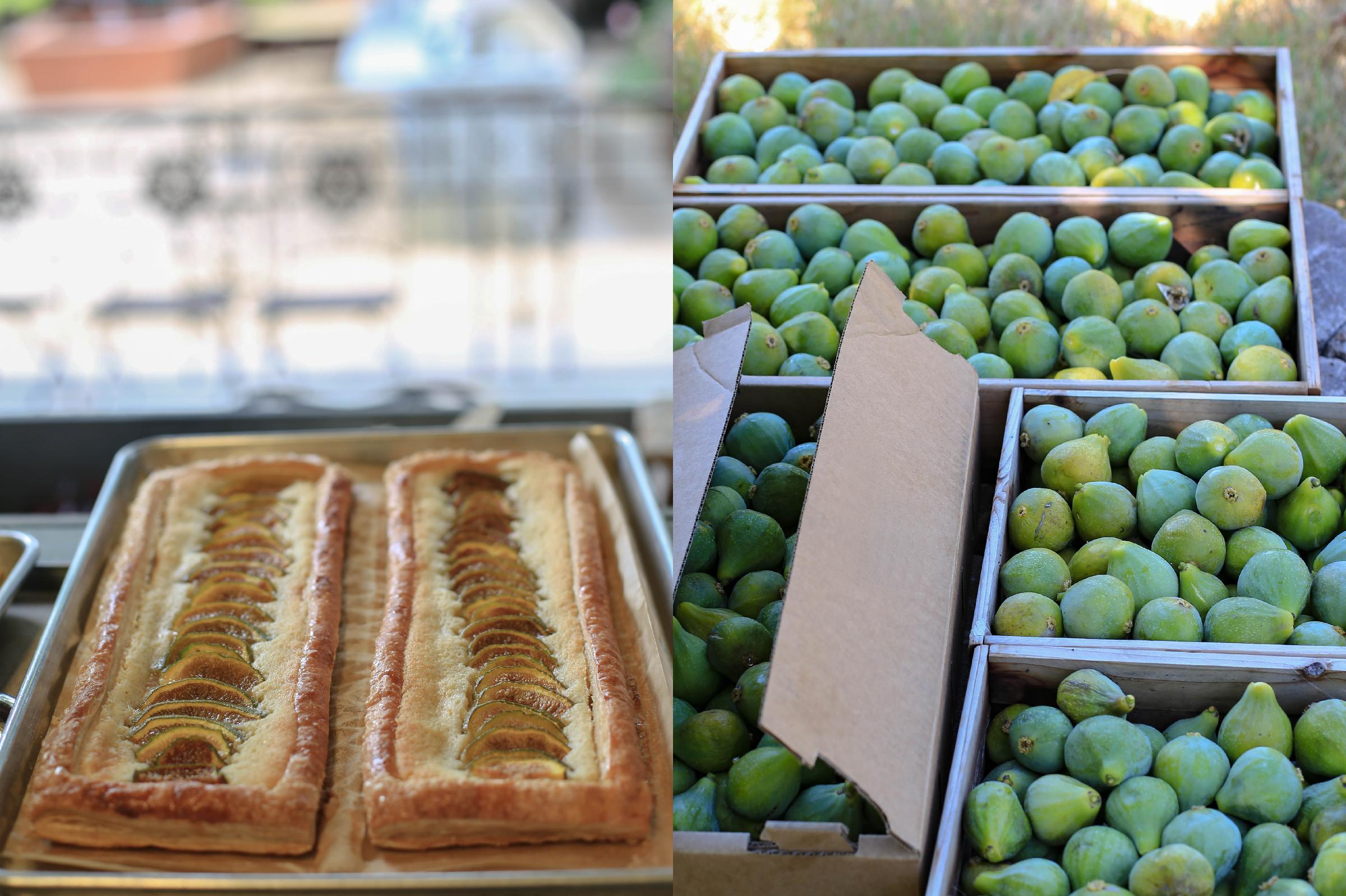 figs for instagram.jpg