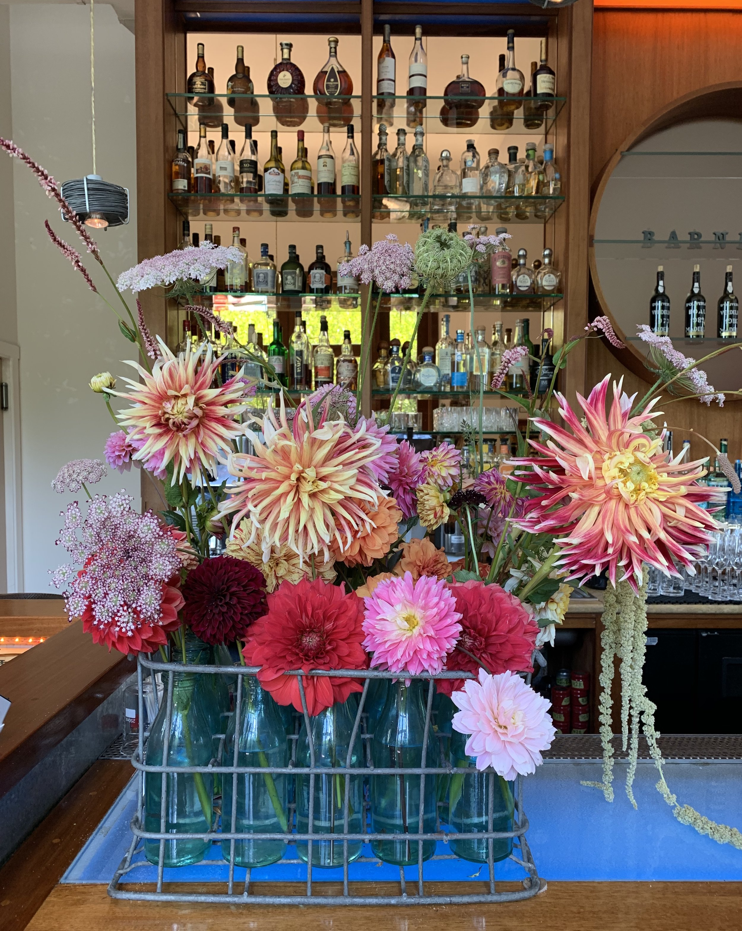 dan's dahlias - our seasonal, weekly floral show continues