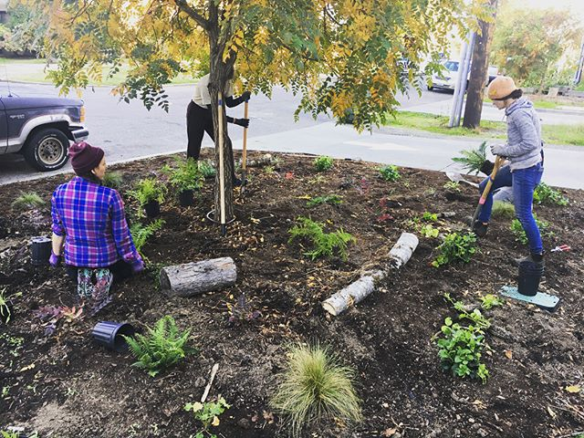 Did you know fall is a great time to support pollinators? It's the best time to plant native species and most perennials - so we've planted Pollinator gardens at three of our farms this week!! 🐝🦋🦇🌱🍂