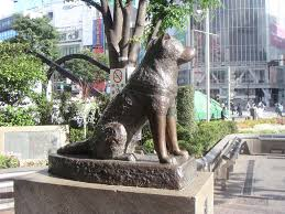 Shibuya sta. by Hachiko (the famous dog)
