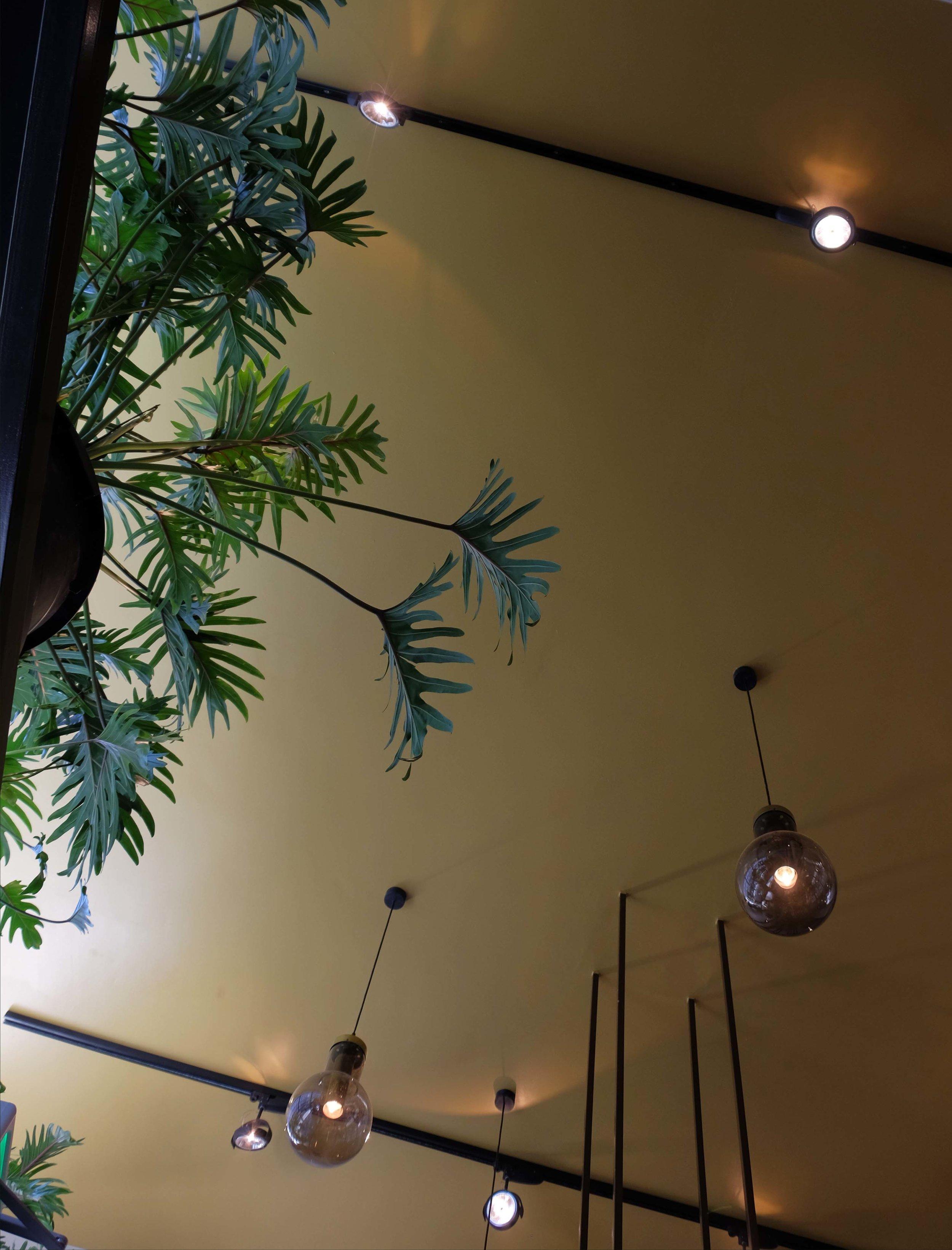 Restaurant Nooch Rotterdam westewagenstraat 56 lex de gooijer interiors 012.jpg