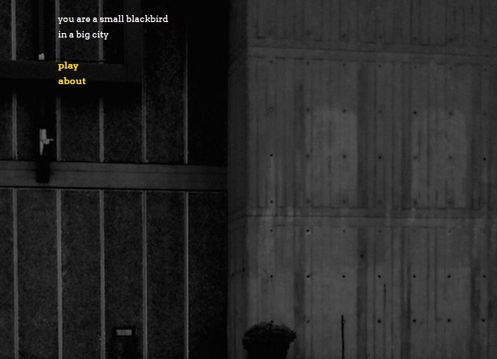blackbird-main.jpg