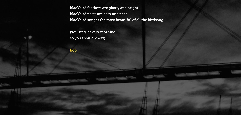 blackbird-2.png