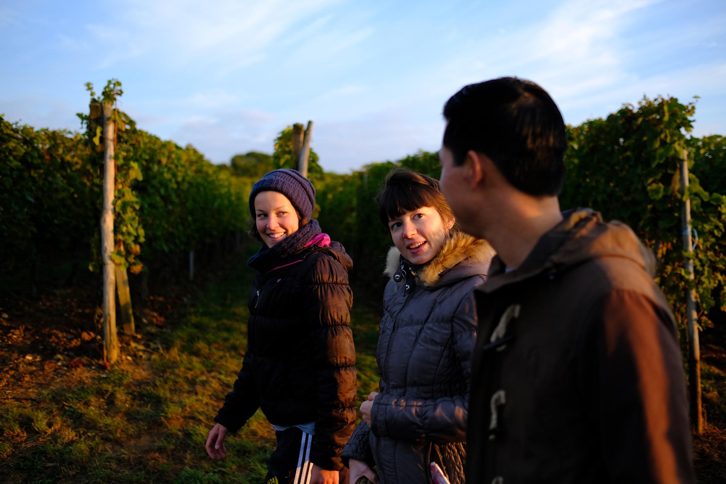 fotoreportage-wijn produceren-Vignoble des 2 lunes-Bosman Wijnkopers-451.jpg