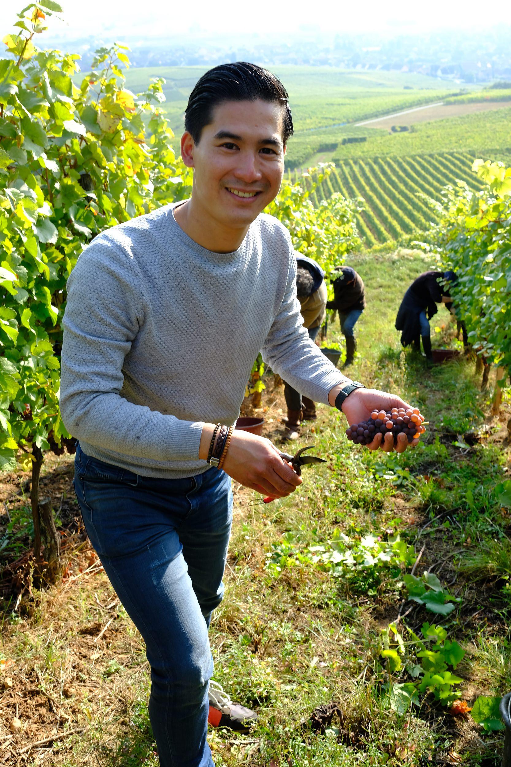 fotoreportage-wijn produceren-Vignoble des 2 lunes-Bosman Wijnkopers-462.jpg