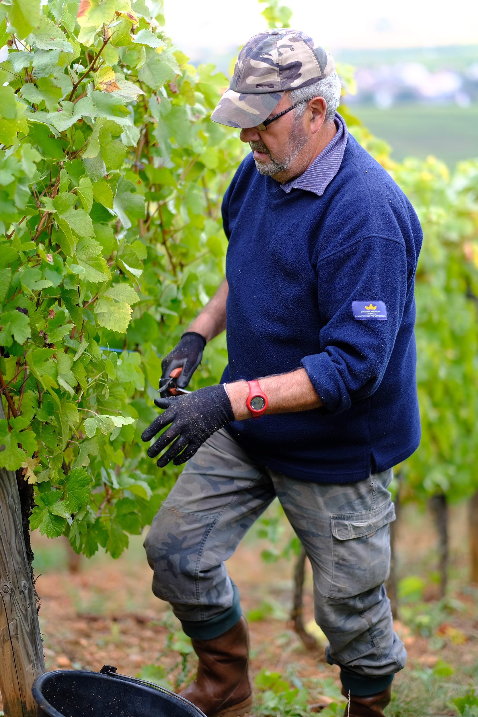 fotoreportage-wijn produceren-Vignoble des 2 lunes-Bosman Wijnkopers-468.jpg