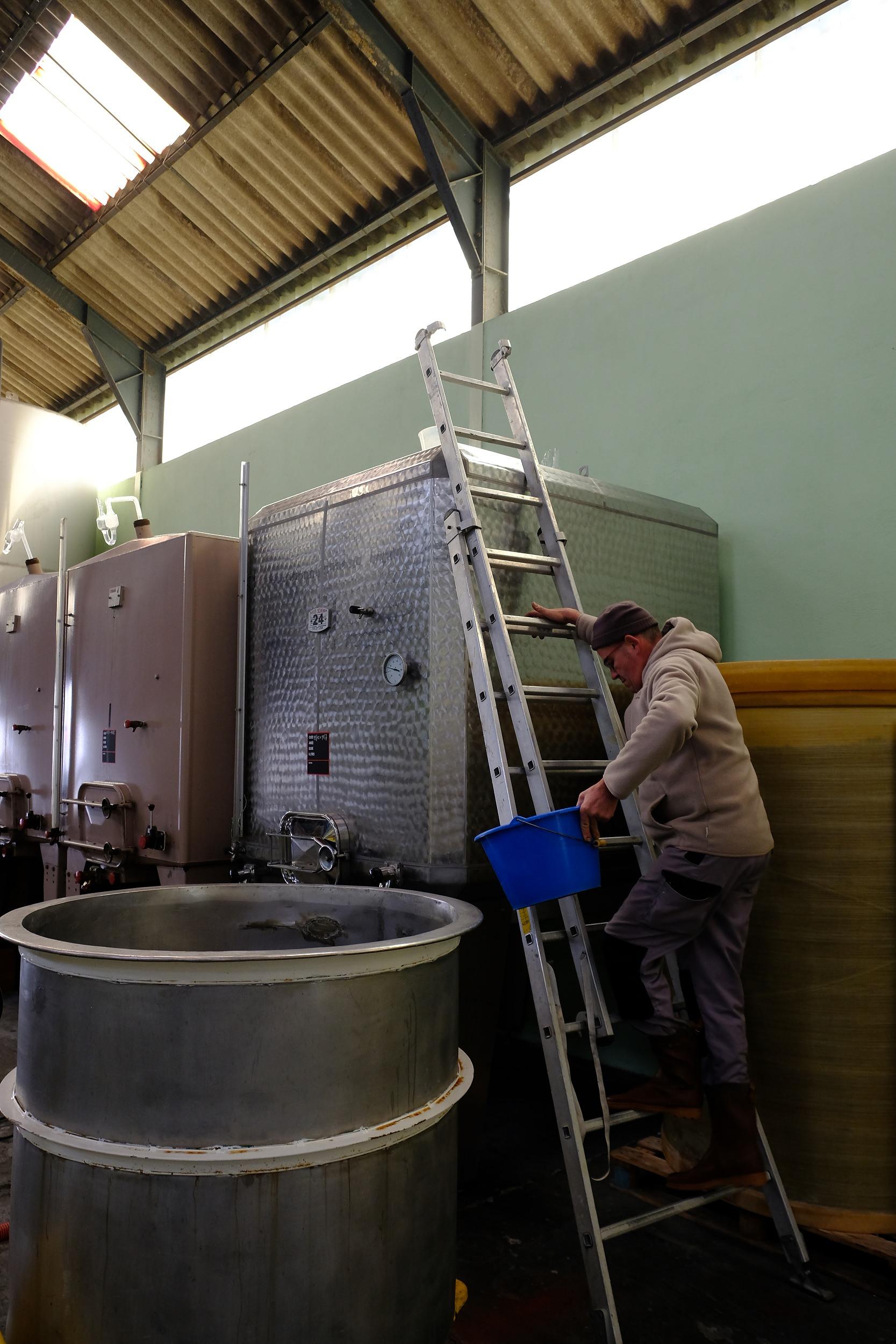 fotoreportage-wijn produceren-Vignoble des 2 lunes-Bosman Wijnkopers-474.jpg