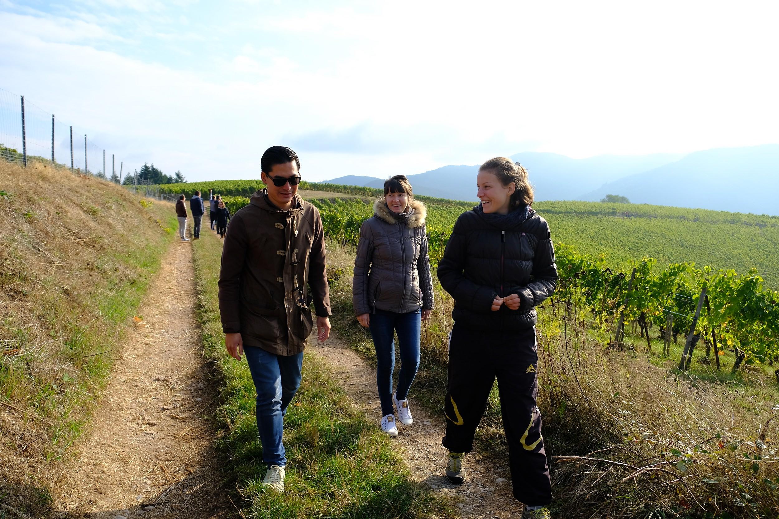 fotoreportage-wijn produceren-Vignoble des 2 lunes-Bosman Wijnkopers-473.jpg