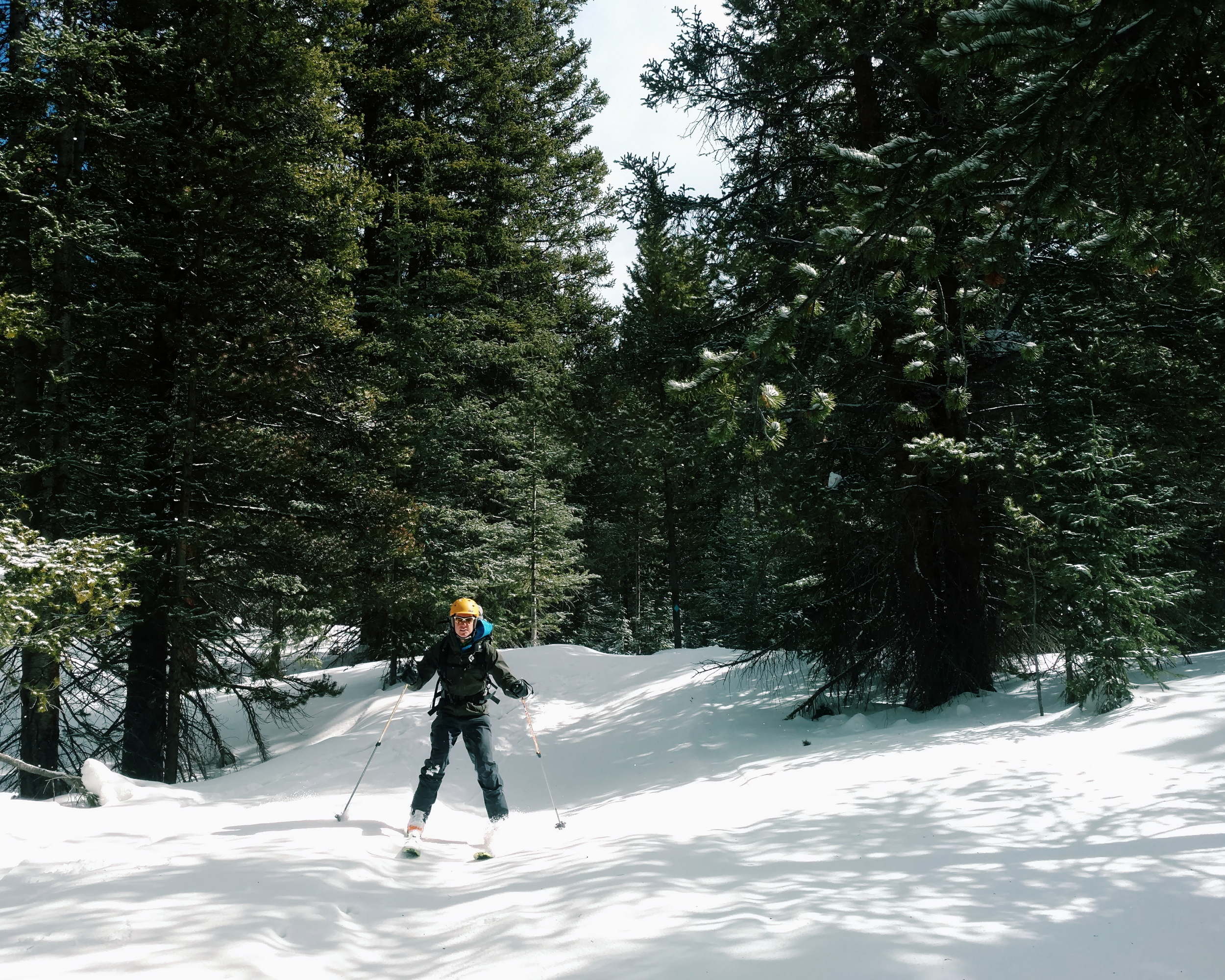 Skiing down through the woods; nearing the end of our trip.  photo/molly krumholz