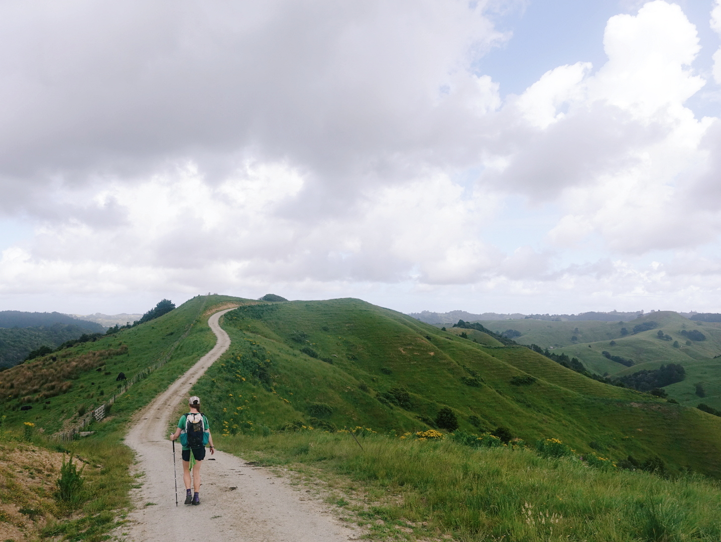 The better roadwalks are on dirt or gravel through pastures and forests. These rolling hills are pretty characteristic of the Northland.  photo/ Jonathan