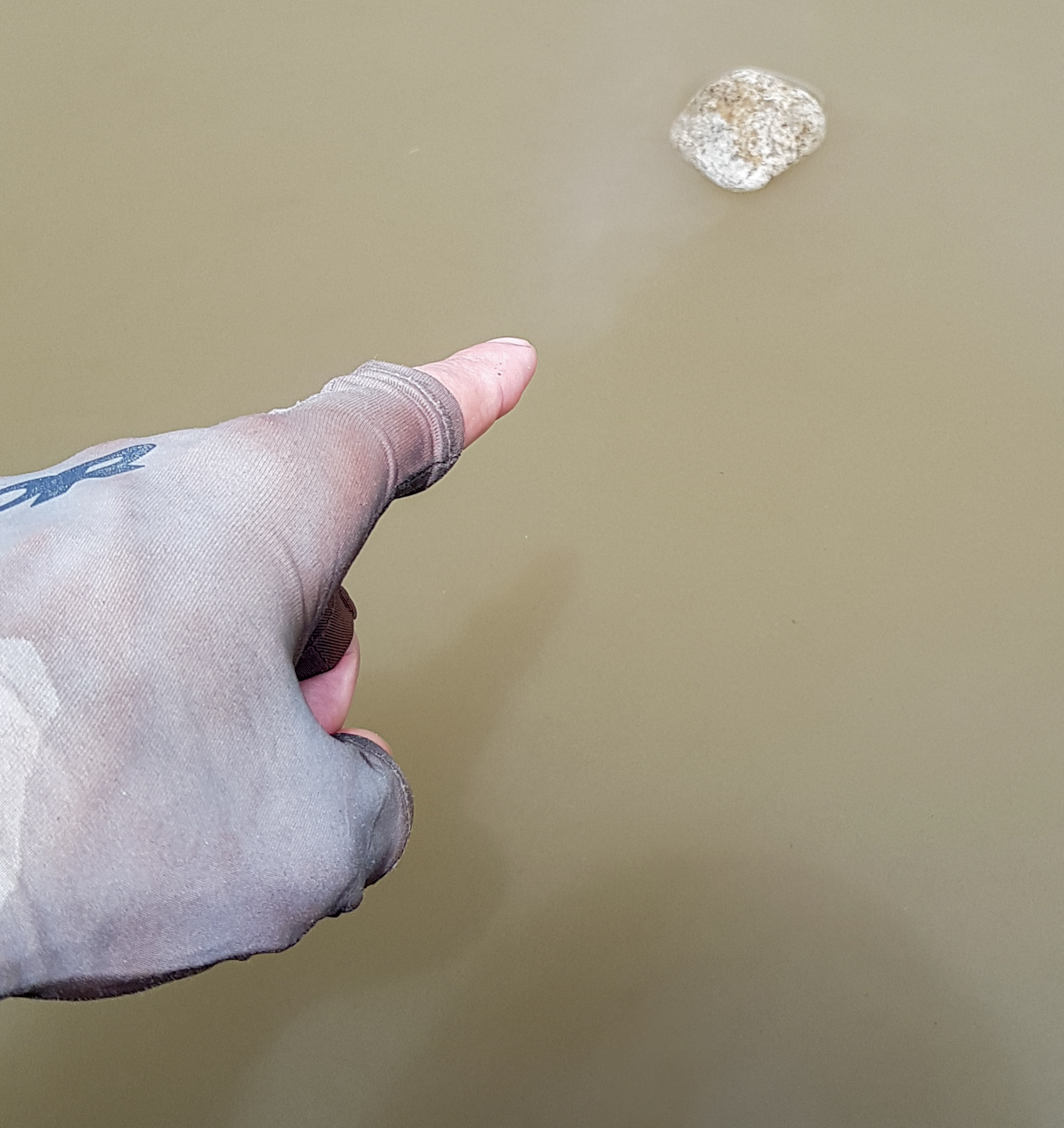 """""""What else floats in water?""""  """"...very small rocks?""""  photo/ Jonathan"""