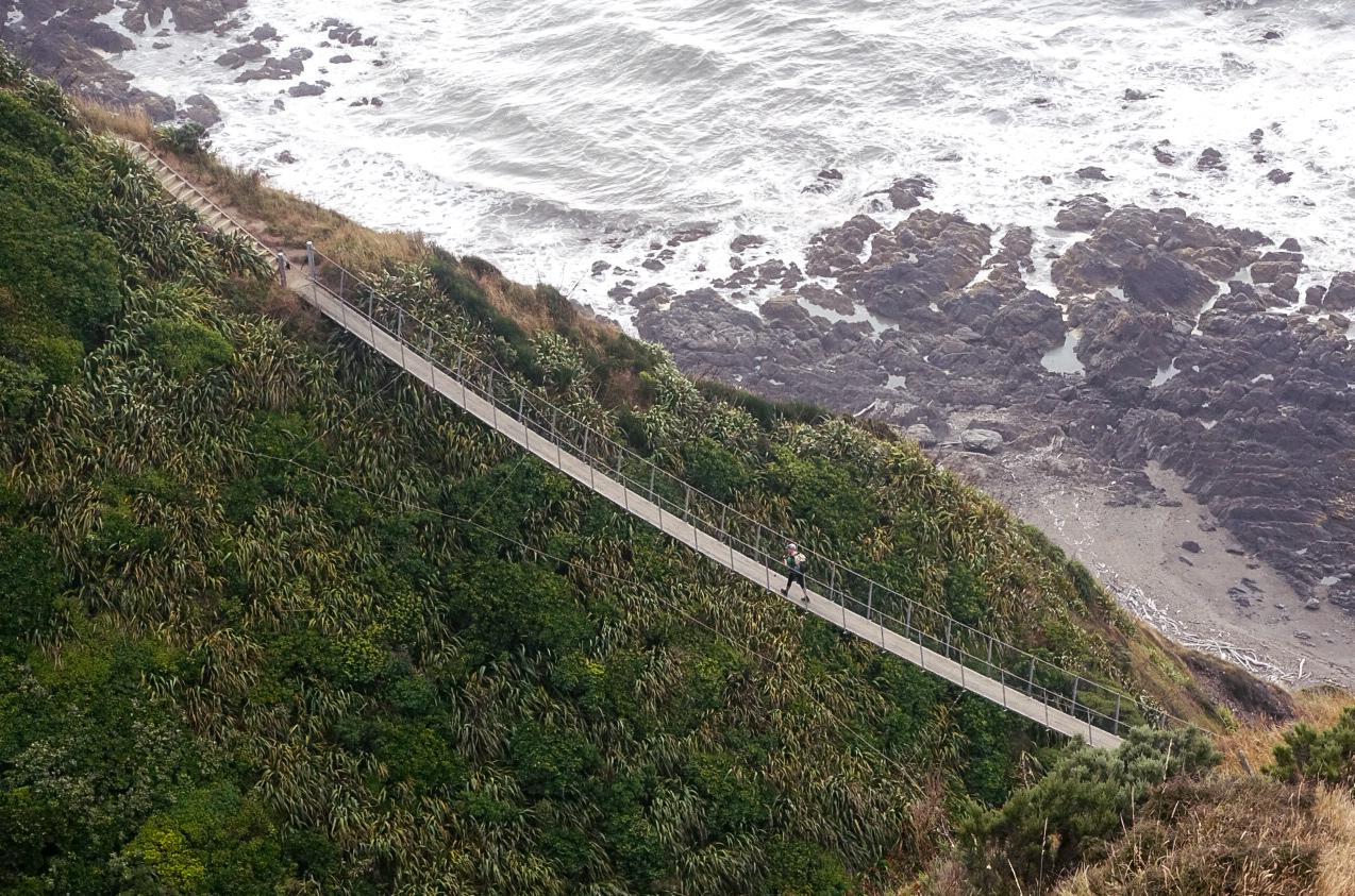 A massive suspension bridge along the Escarpment Track  photo/ Jonathan