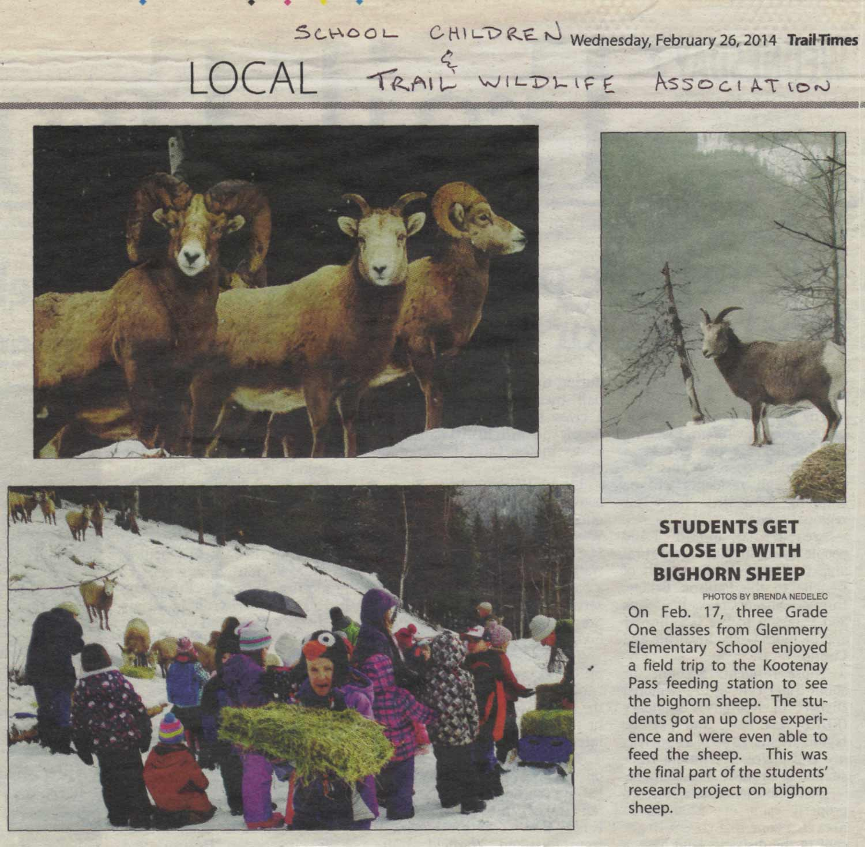 Credit: Trail Times