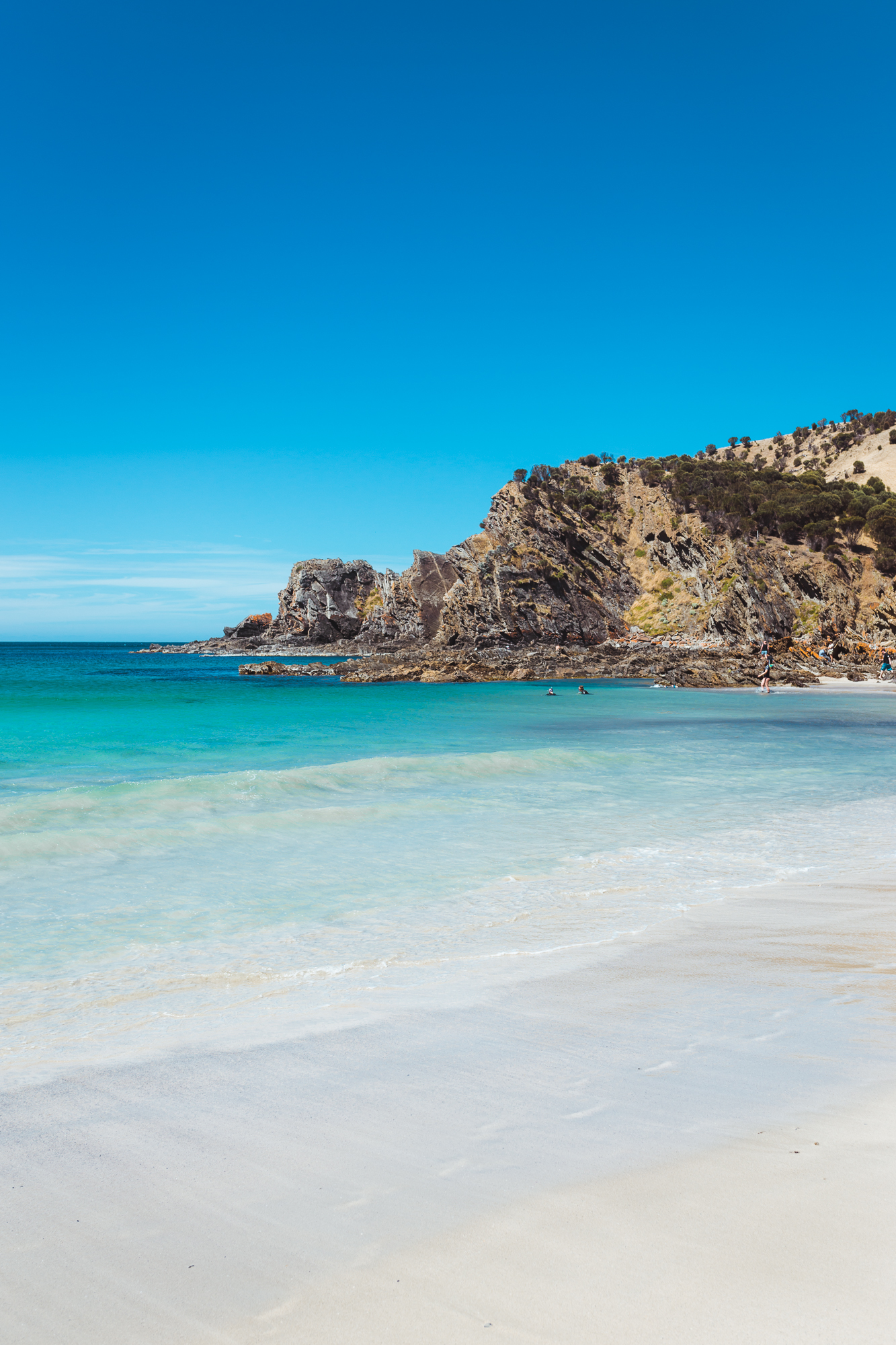 Kangaroo Island-202.jpg