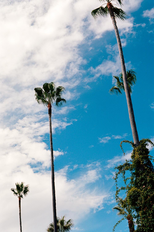 Hearst Castle Grounds, San Simeon, CA