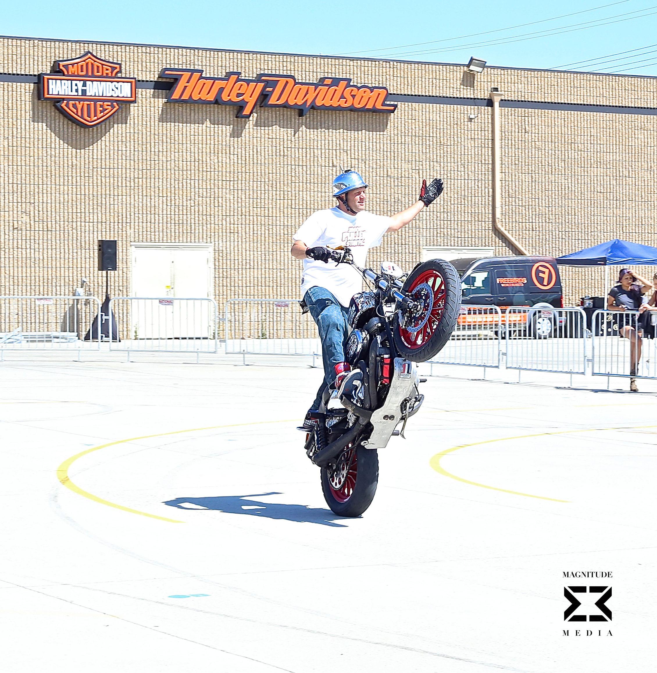 stunt41.jpg